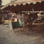 How Carnival Rides Were Once Powered By Mule