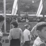 The Monkey Speedway