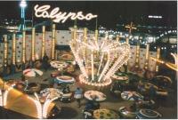Museum RAS calypso.jpg