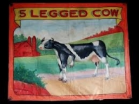 Fred Johnson Sideshow Banner 5 Legged Cow