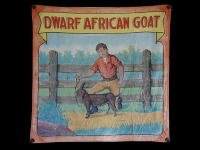 Fred Johnson Sideshow Banner Dwarf African Goat