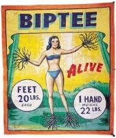 Museum Snap Wyatt Banner Biptee.jpg