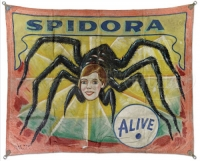 Museum Snap Wyatt Banner Spidora.jpg