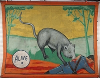 Museum Snap Wyatt Banner Rat.jpg